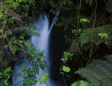 The magnificent Wairere Falls located in historical Buried Village