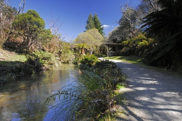 The Buried Village of Te Wairoa